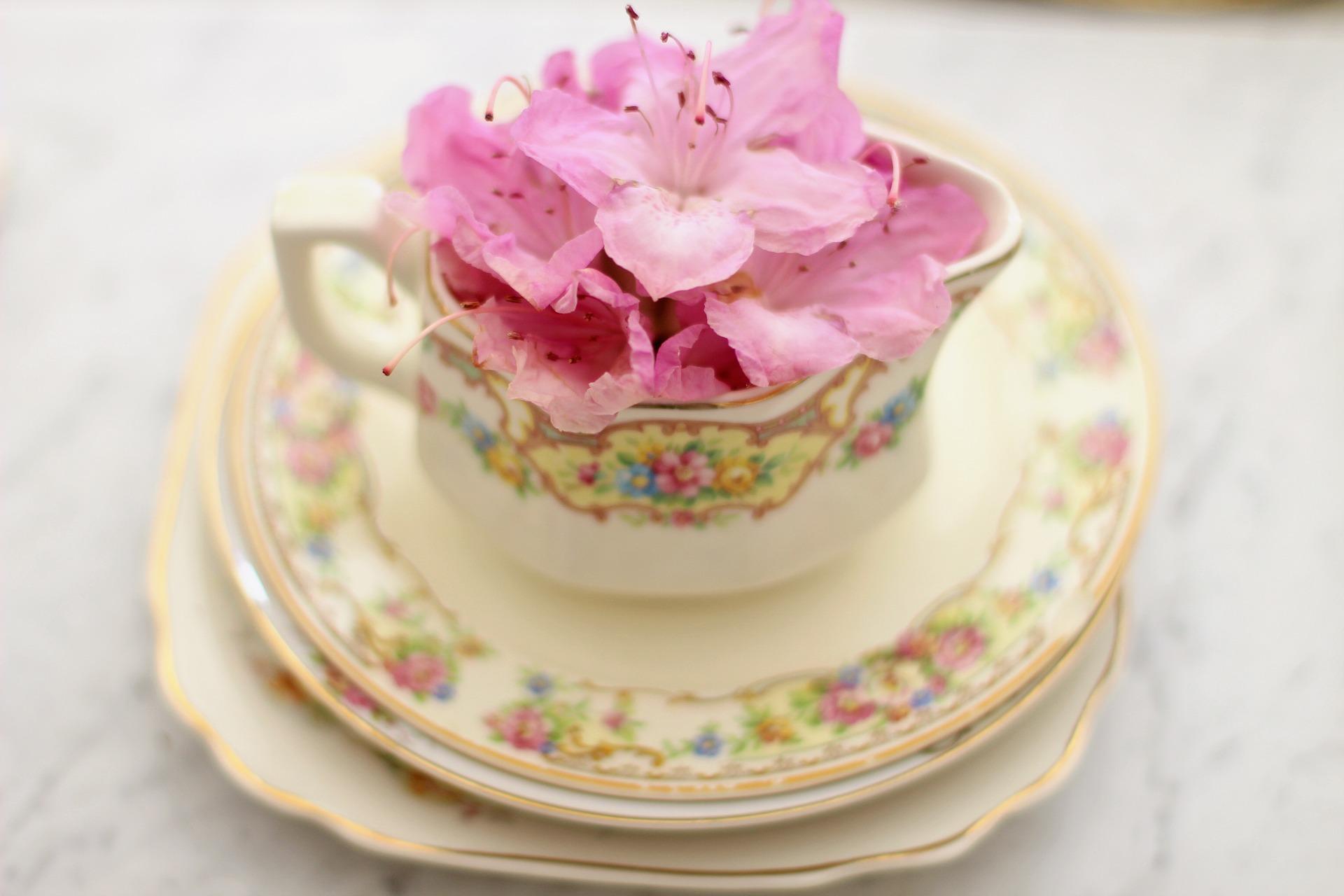 tea-cup-3483651_1920